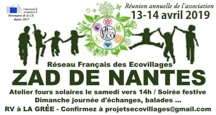 RFEco-04-19